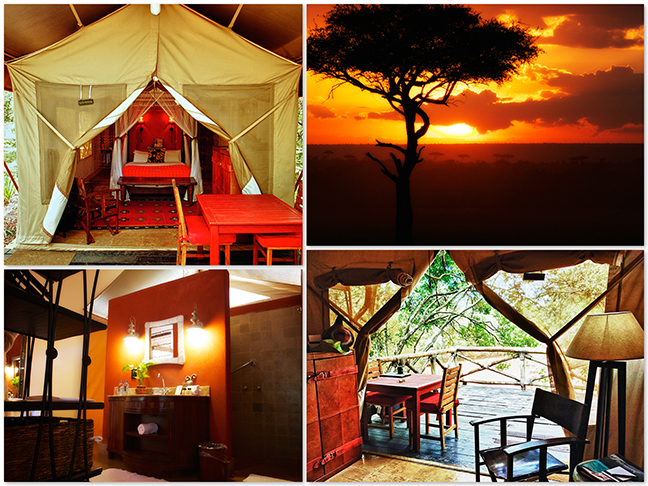 Fairmont Masai Mara Safari Club Luxury